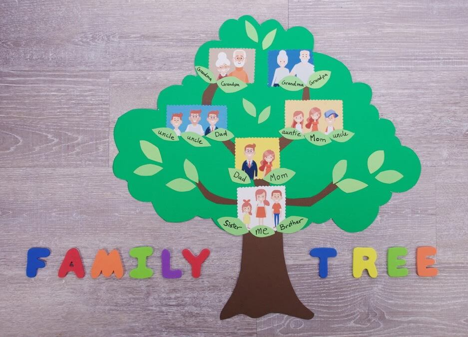 Family Tree Project Ideas for Kids The Hierarchy