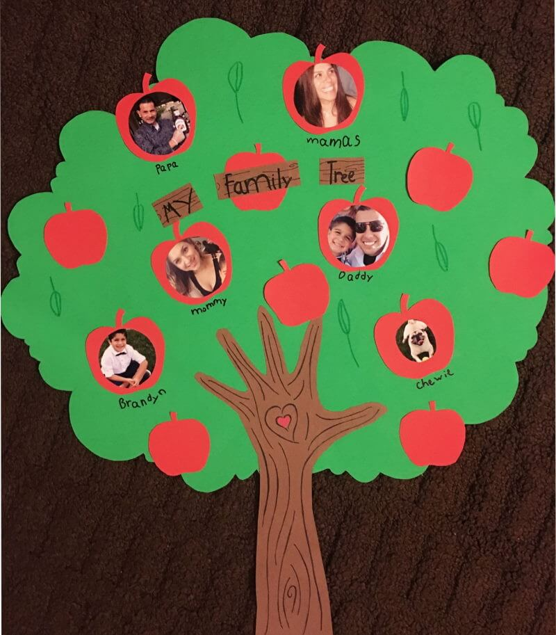 Family Tree Project Ideas for Kids Apples Of The Same Basket