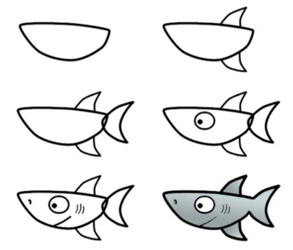 How to Draw Animals - Step by Step Tutorials On Animal Drawings. Step by Step Shark