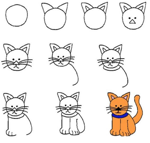 Step by Step Cat How to Draw Animals - Step by Step Tutorials On Animal Drawings.