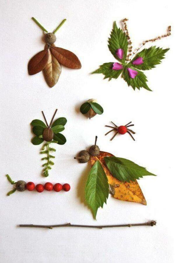 The Insect group
