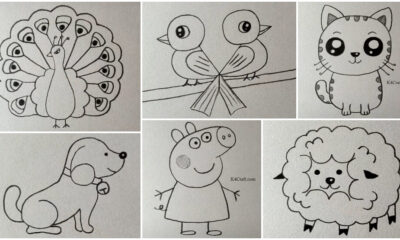 Easy Drawings for Kids - Peacock, Parrot, Bird, Dog, Puppy, Peppa Pig, Sheep