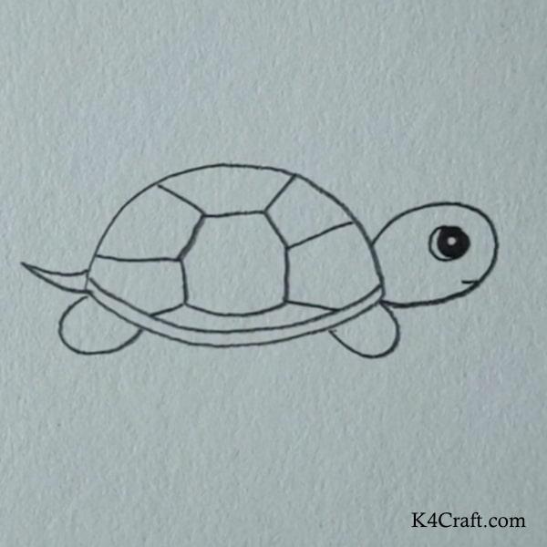Tutor Turtle