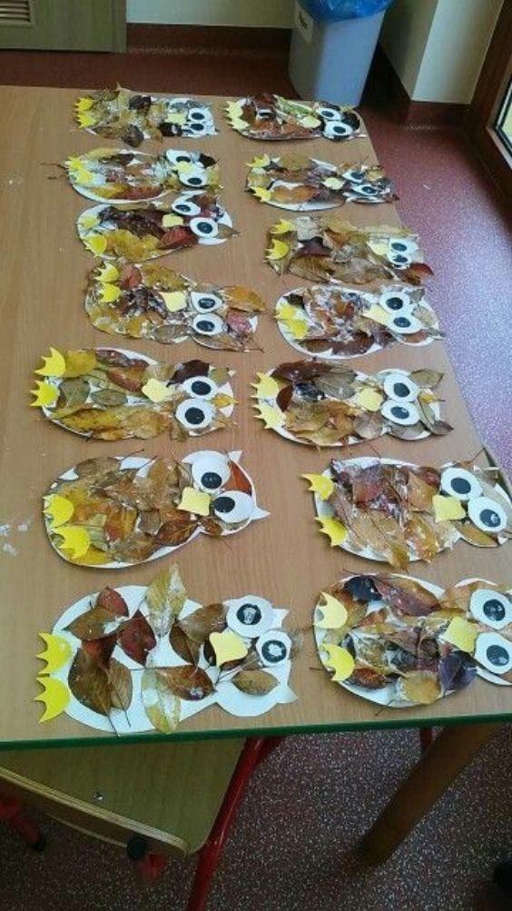 The Owl Gang