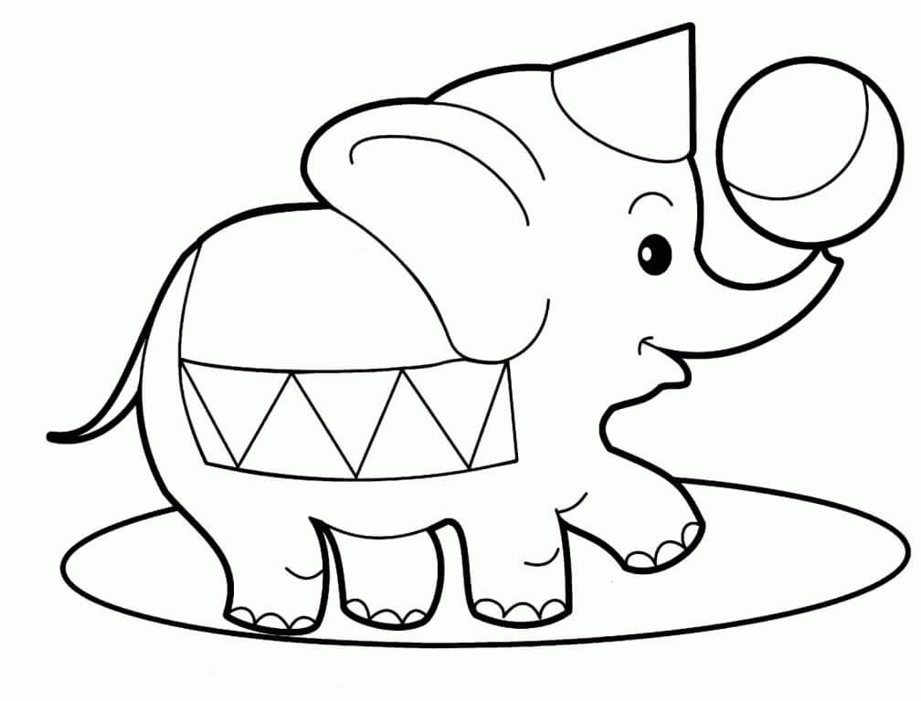 Circus Elephant With A Ball