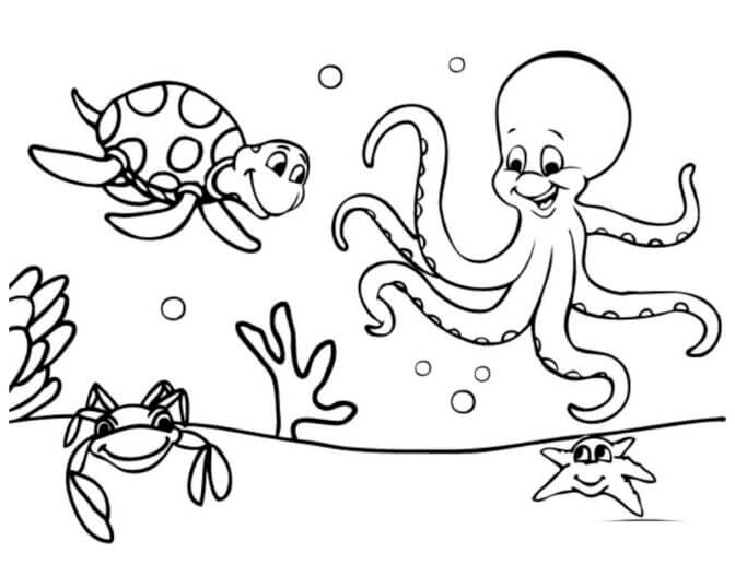 Easy and Interesting Sea Animal Coloring Pages for Kids The Octopus And Turtle